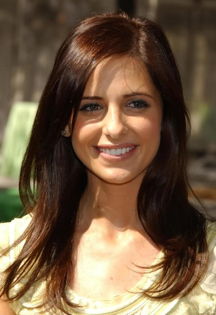 Brown Hair Color with Golden Highlights